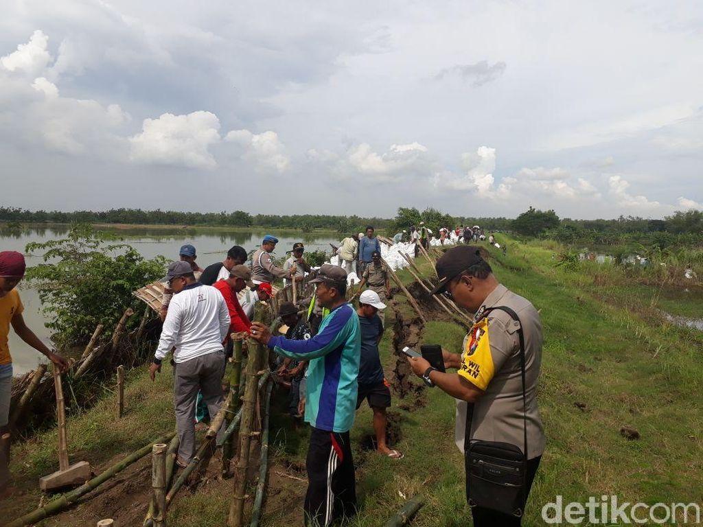 Debit Air Sungai Bengawan Solo Naik, Tanggul Wedok Longsor
