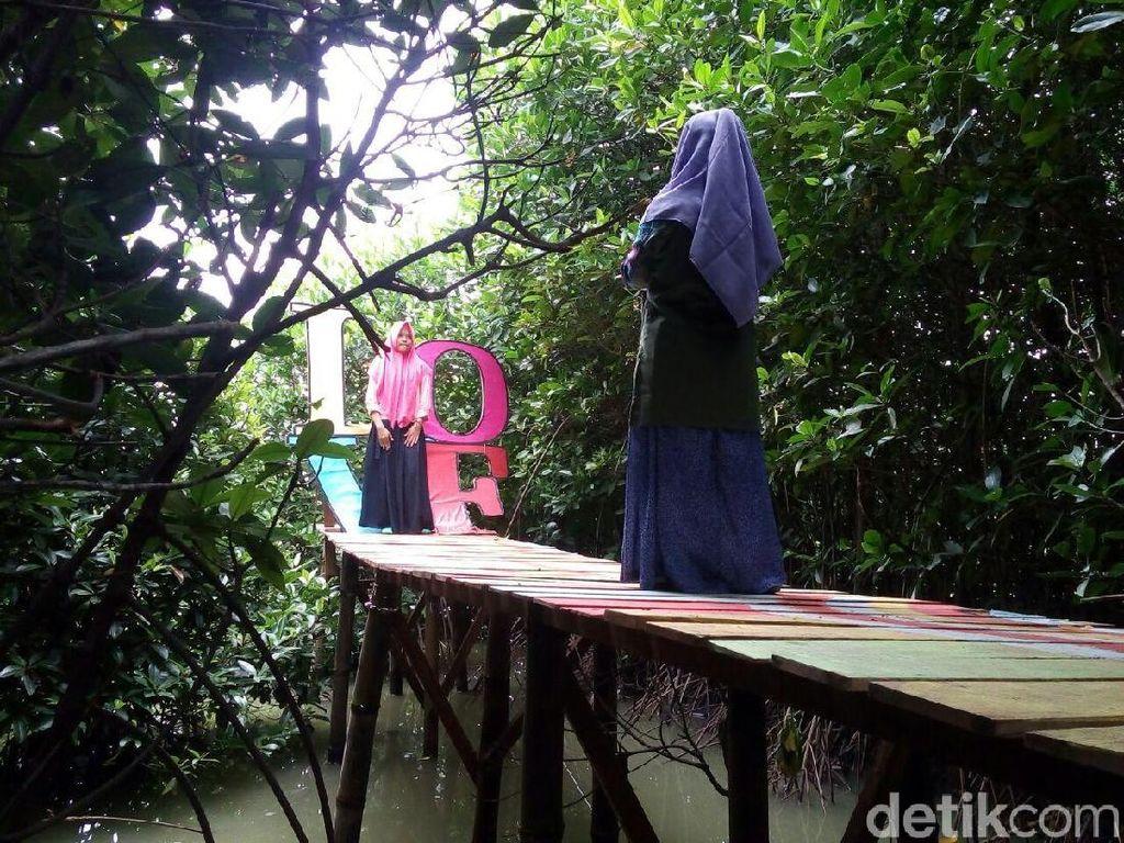 Foto: Hutan Mangrove Kekinian di Demak