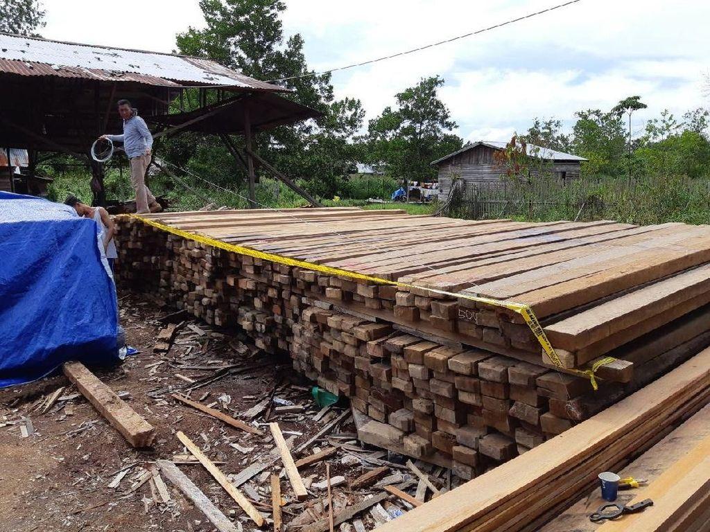Polisi Sita Ratusan Balok Kayu Ilegal di Kalbar