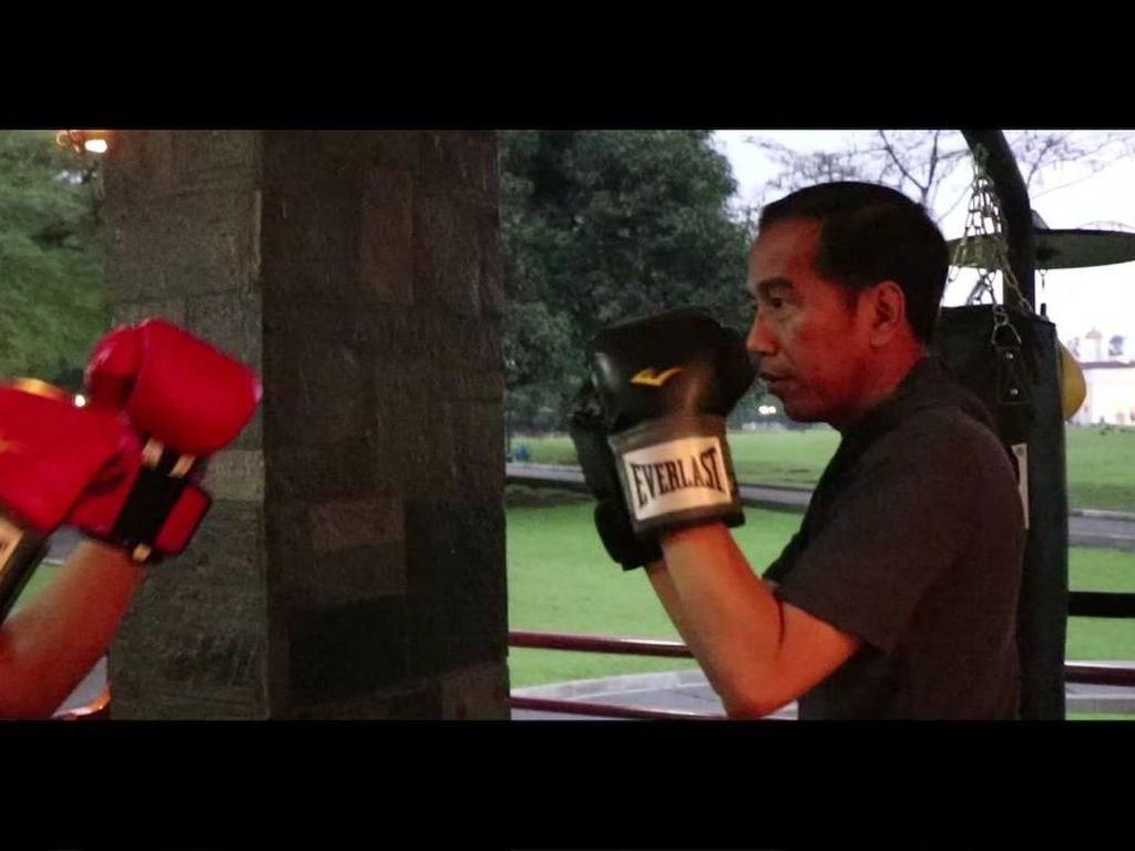 Foto: Aksi Jokowi Latihan Tinju di Istana Bogor