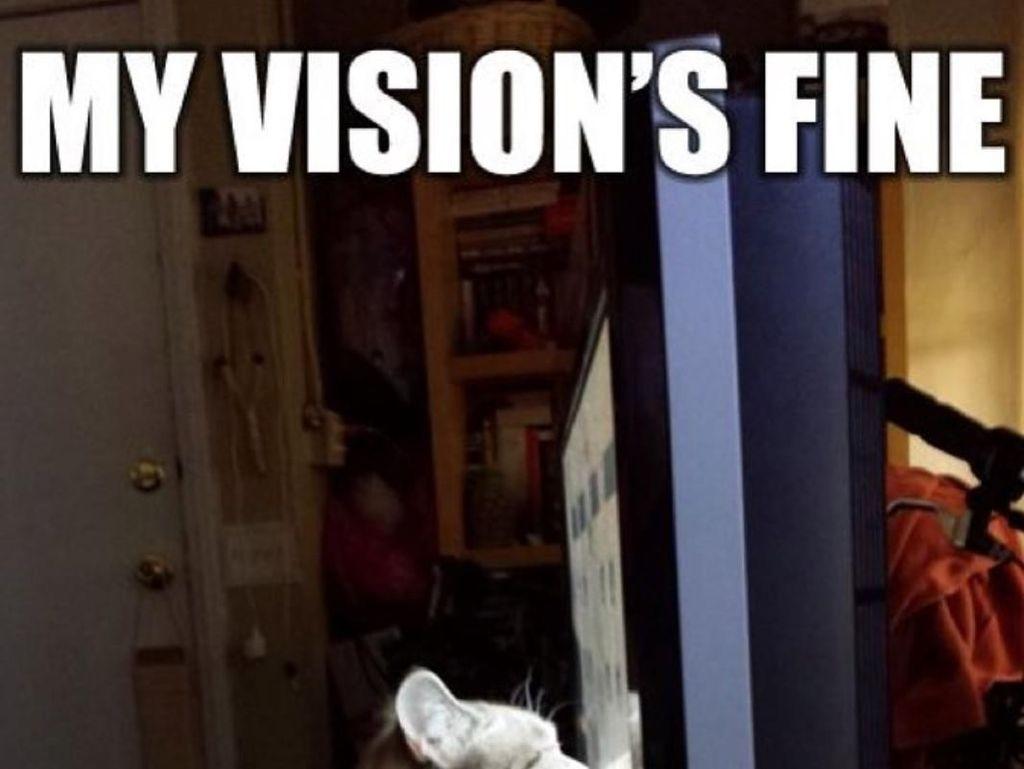 15 Meme yang Paling Ngena Buat Para Pengguna Kacamata