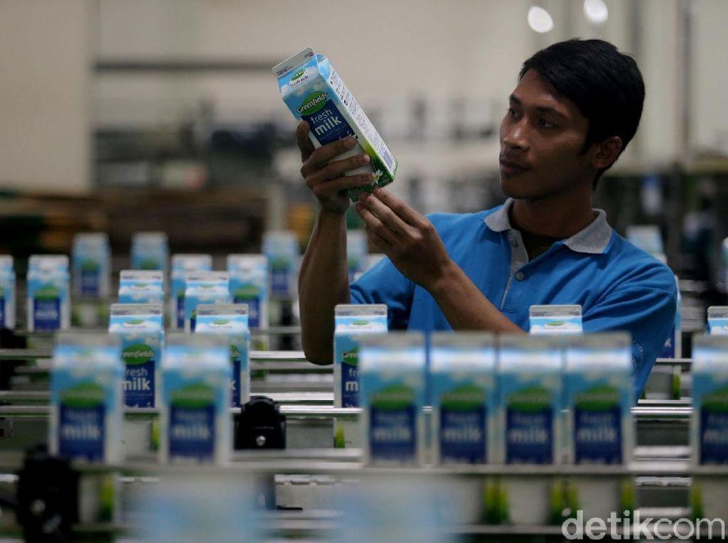 Melihat Pabrik Susu Modern di Malang