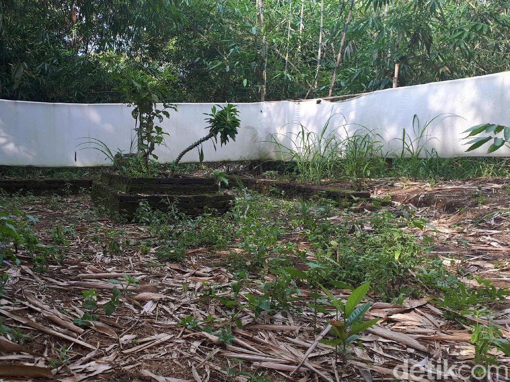 Makam Keramat di Tangerang Dipagari Pakai Kain Kafan