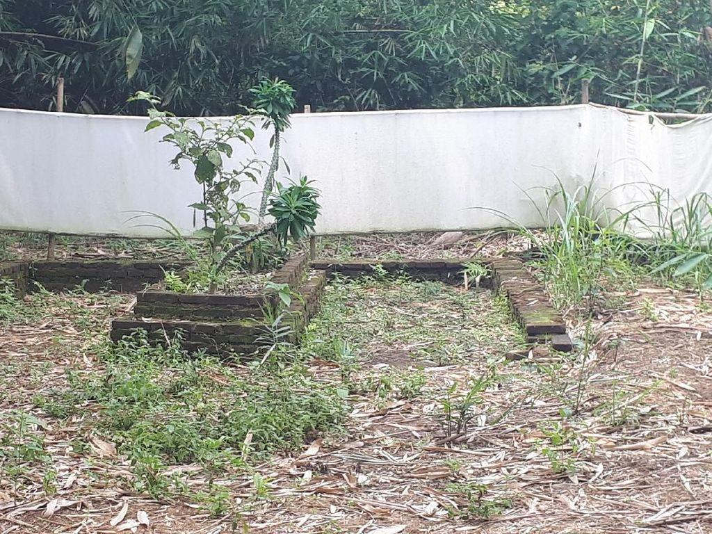 Kata Warga, Banyak Peziarah Berdatangan ke Makam Keramat di Tangerang