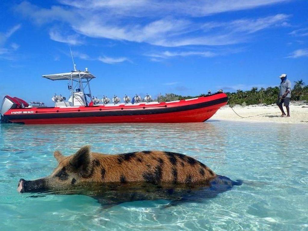 Foto: 7 Pantai Tidak Biasa di Dunia