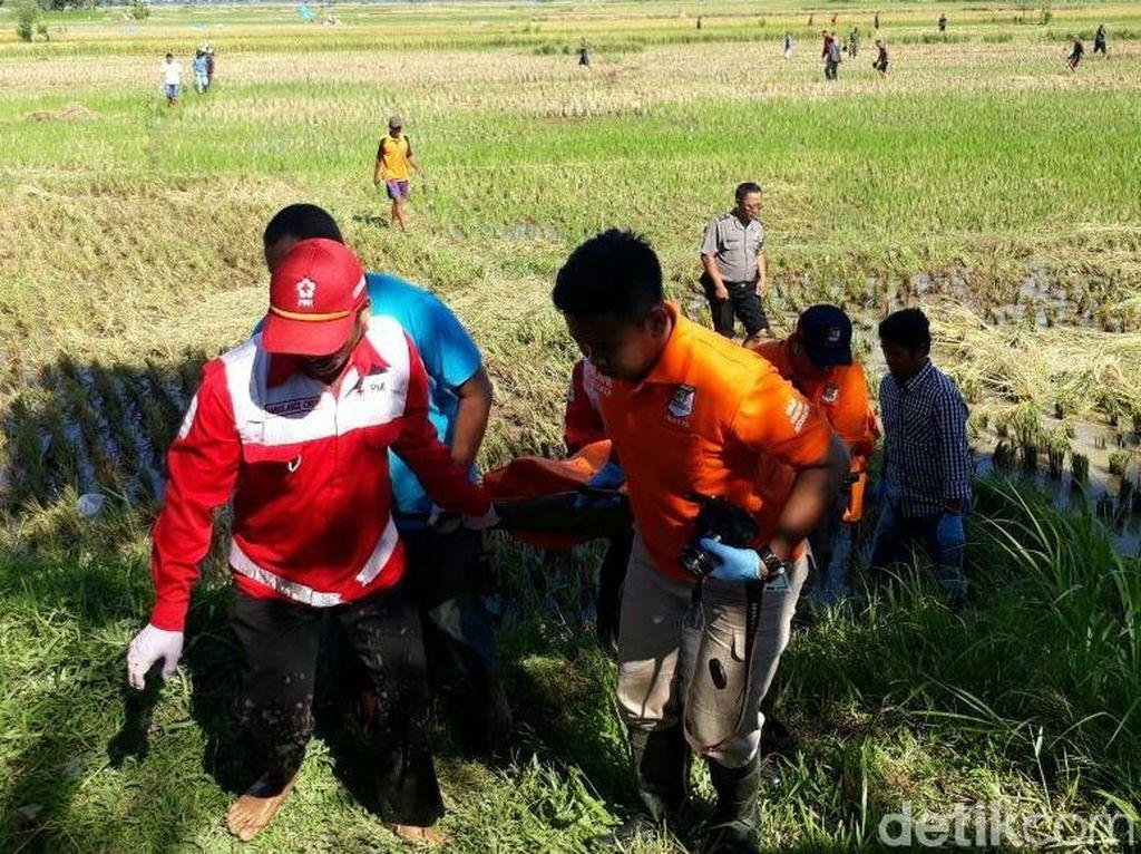Mayatnya Ditemukan di Sawah, Sutarmi Diduga Dibunuh Anaknya Sendiri
