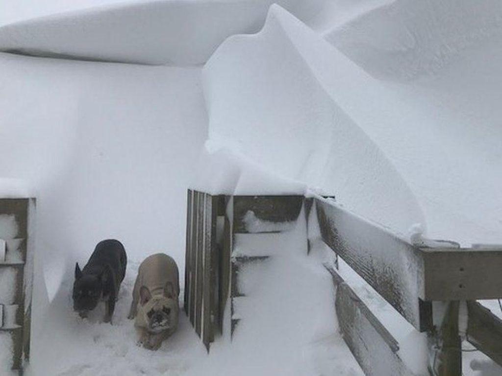Cuaca Super Dingin Eropa, Warga Bakar Perabotan untuk Hangatkan Badan