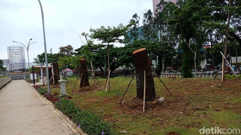 Foto: Kalijodo Jadi Rumah Baru Pohon Sudirman-Thamrin