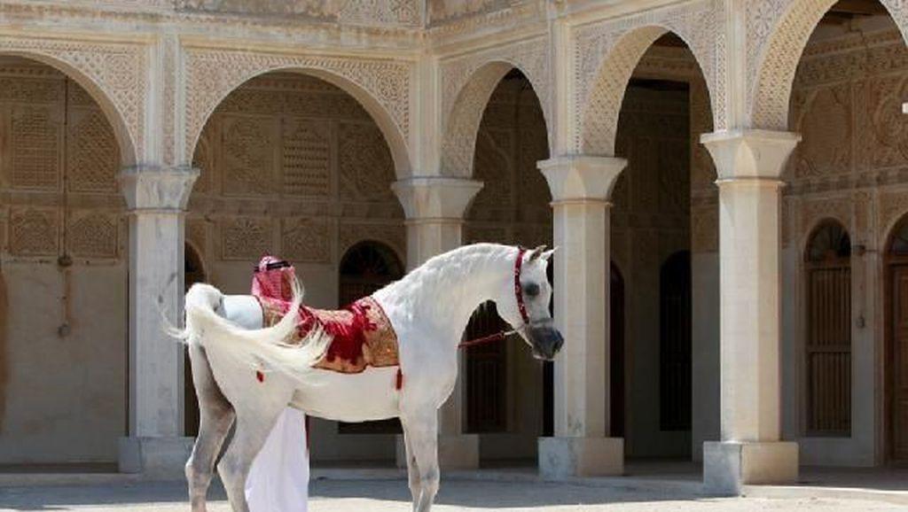 Foto: Hotel Mewah di Qatar... Tapi Untuk Kuda