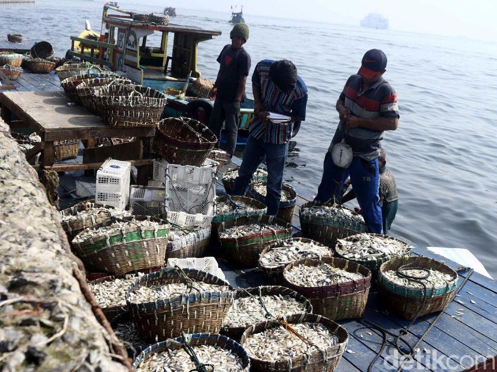 Geliat Nelayan di TPI Cilincing