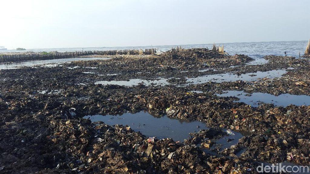 Foto Hari ke-2 Hasil Pembersihan Sampah di Teluk Jakarta