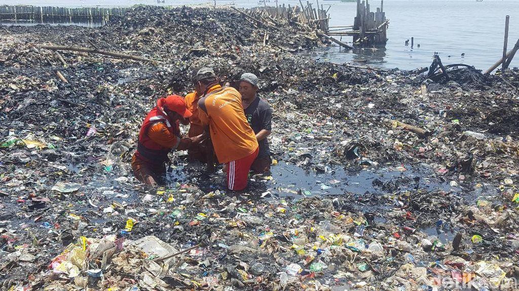 Penampakan Terkini Sampah di Teluk Jakarta yang Mulai Ambles