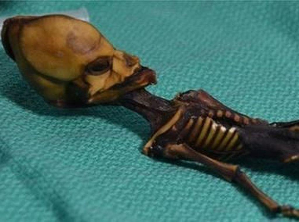 Peneliti Ungkap Misteri Mumi yang Diduga Jenazah Alien