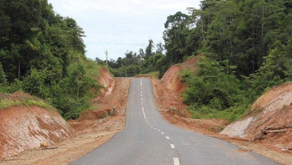 Jalan Perbatasan Papua 1.098 Km Dibangun Tembus Hutan dan Bukit