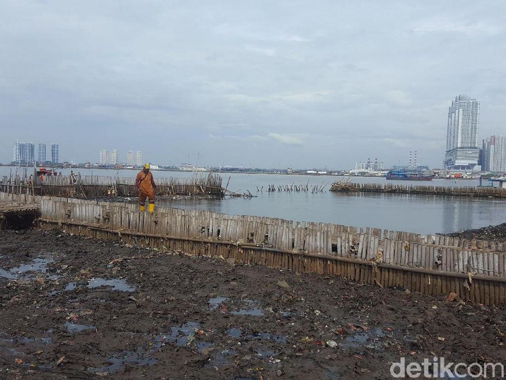 Sudah 116 Ton Sampah Diangkut dari Teluk Jakarta