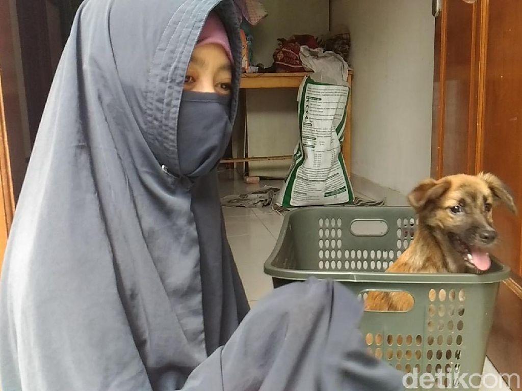 Ini Kata Hesti Wanita Bercadar Soal Liur Anjing Peliharaannya
