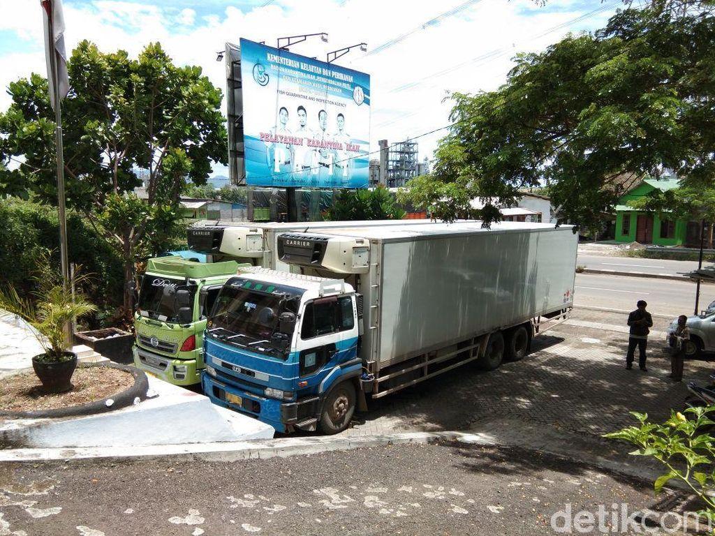 Petugas Sita 2 Truk Kontainer Berisi Ikan Patin dari Malaysia