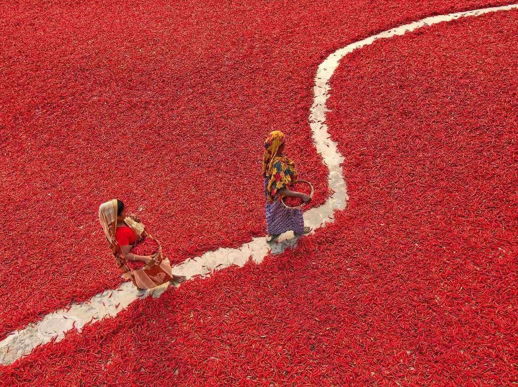 Foto: Kota di Bangladesh Tiba-tiba Jadi Lautan Merah, Ada Apa?