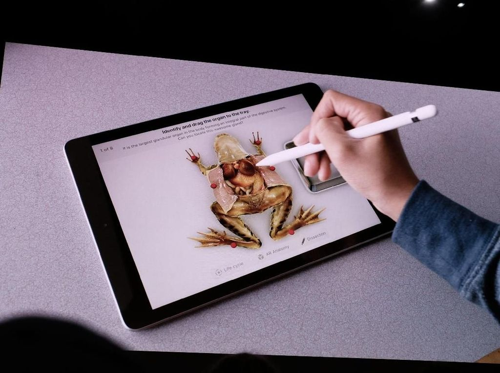 Baterai iPad Meledak Bikin Apple Store Ini Dievakuasi