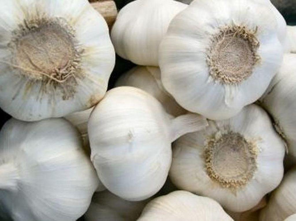 Mendag Batalkan Impor Bawang Putih, Bagaimana Penugasan Bulog?
