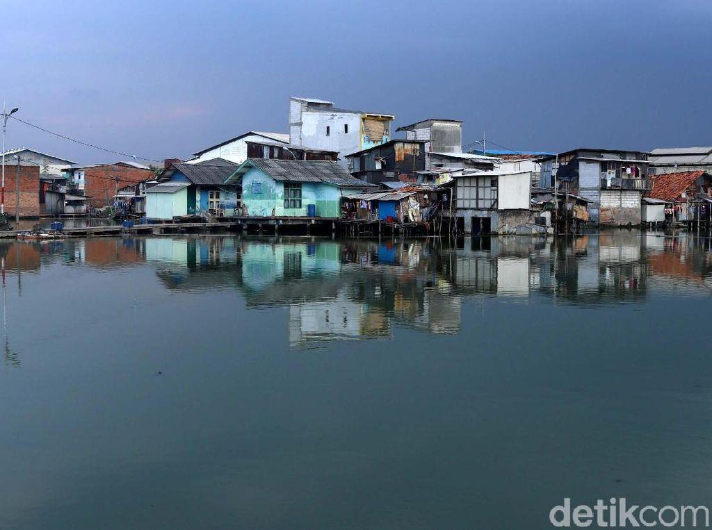 Mengintip Kampung Apung Kapuk yang Kini Bersih