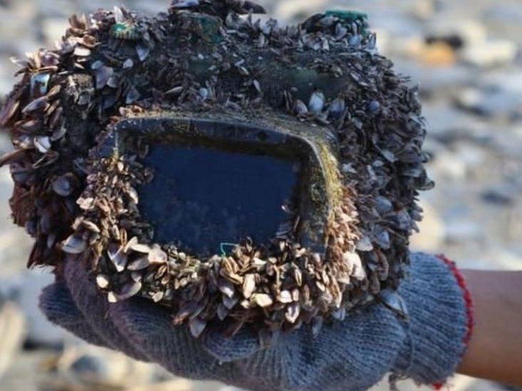 2 Tahun Hilang di Laut, Kamera Ini Ditemukan dan Masih Berfungsi