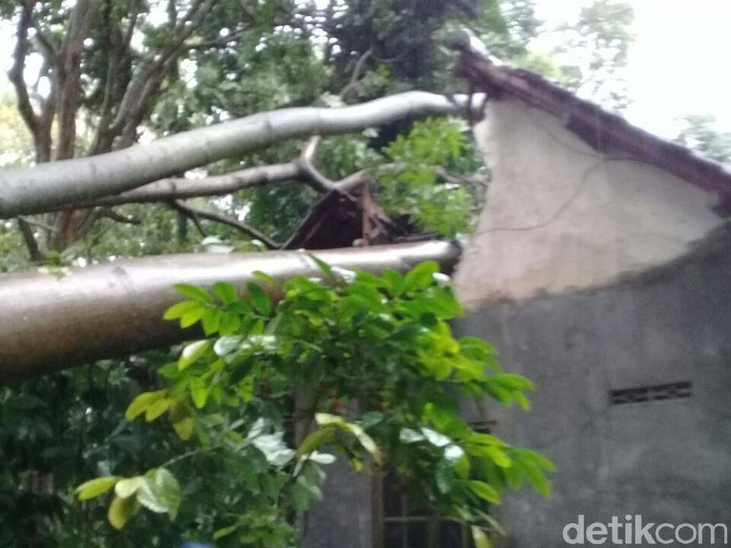 Angin Kencang di Blitar, Tiang Listrik Roboh Membelah Rumah Warga