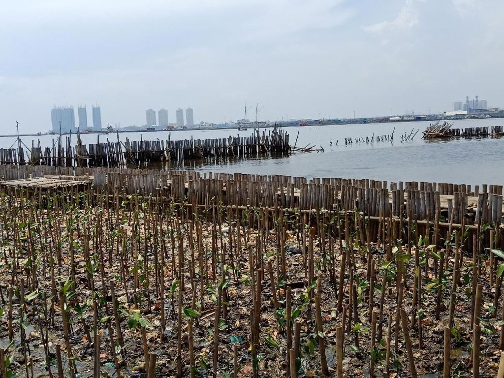 Pengambilan Sampah Teluk Jakarta Disetop, Kapal Patroli Siaga
