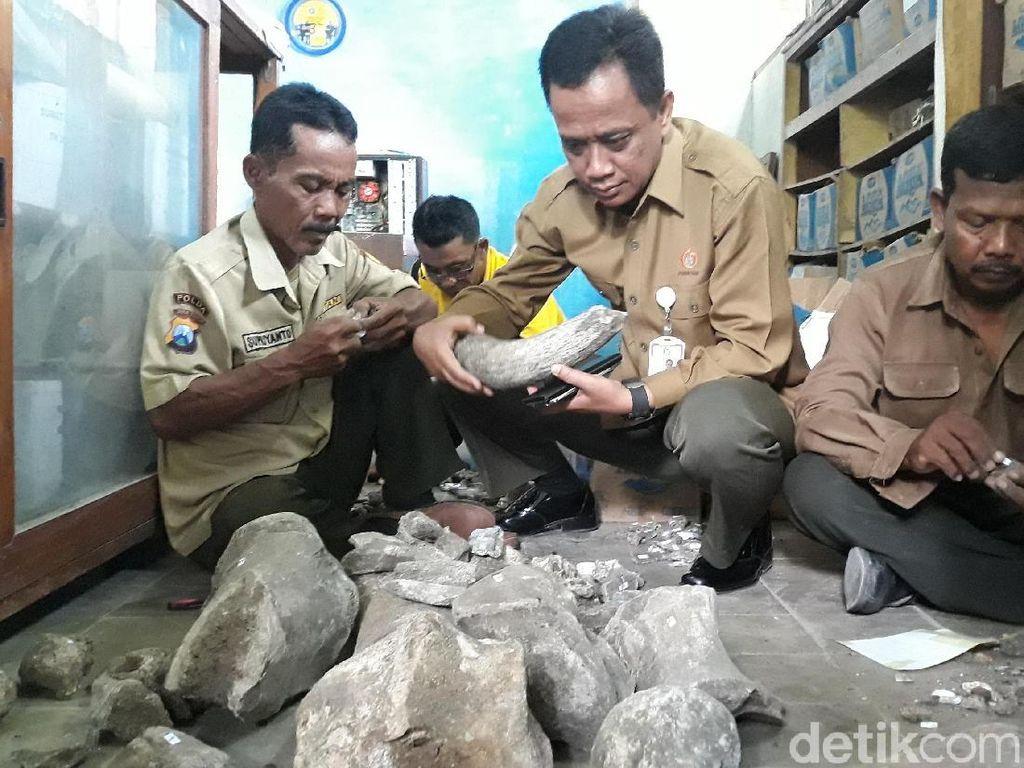 Fosil Temuan Petani Ngawi Dibawa Ke Madiun, Ini Alasannya