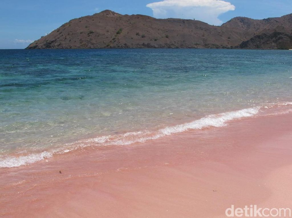 Kapan Kamu ke Pantai yang Pasirnya Pink Ini?
