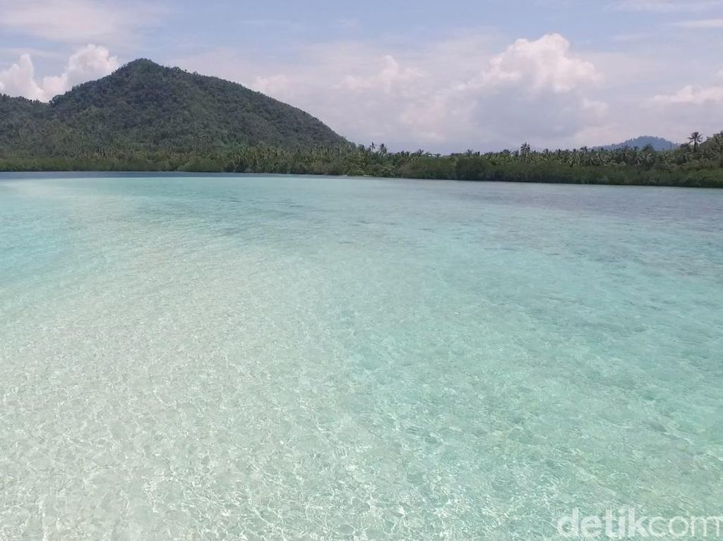 Celebrity on Vacation: Indahnya Bawah Laut Pulau Pahawang Kecil