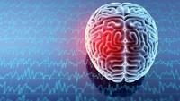 Wadaw! COVID-19 Disebut Peneliti Bisa Bikin Otak Menciut