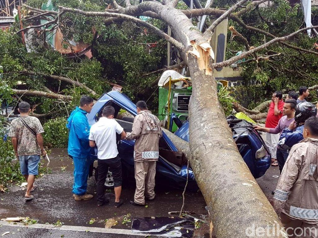 Dramatis, Bripka Lutfi Lolos dari Maut Saat Mobilnya Tertimpa Pohon