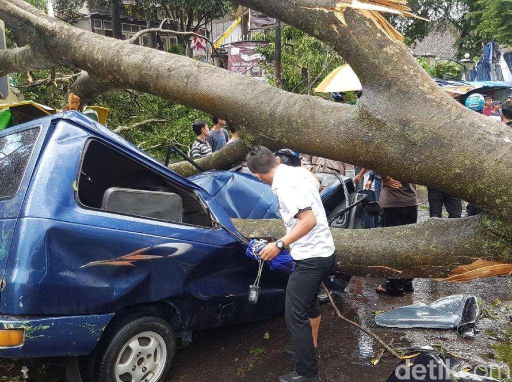 Ngeri! Beringin Timpa Mobil Berisi Polisi Sukabumi dan Istrinya