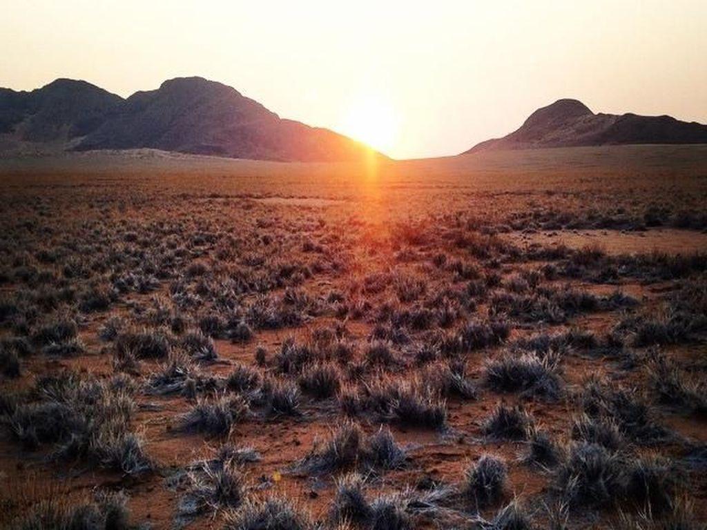 BUMN RI Diajak Bikin Pelabuhan hingga Rel Kereta di Namibia
