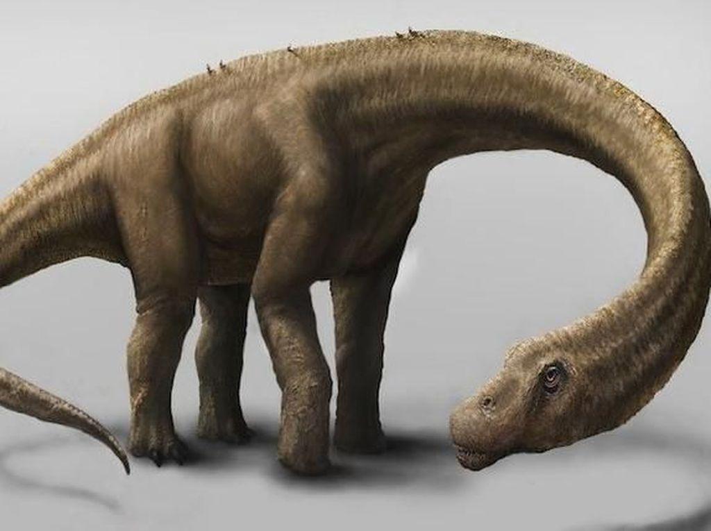 10 Dinosaurus Terbesar Sepanjang Sejarah