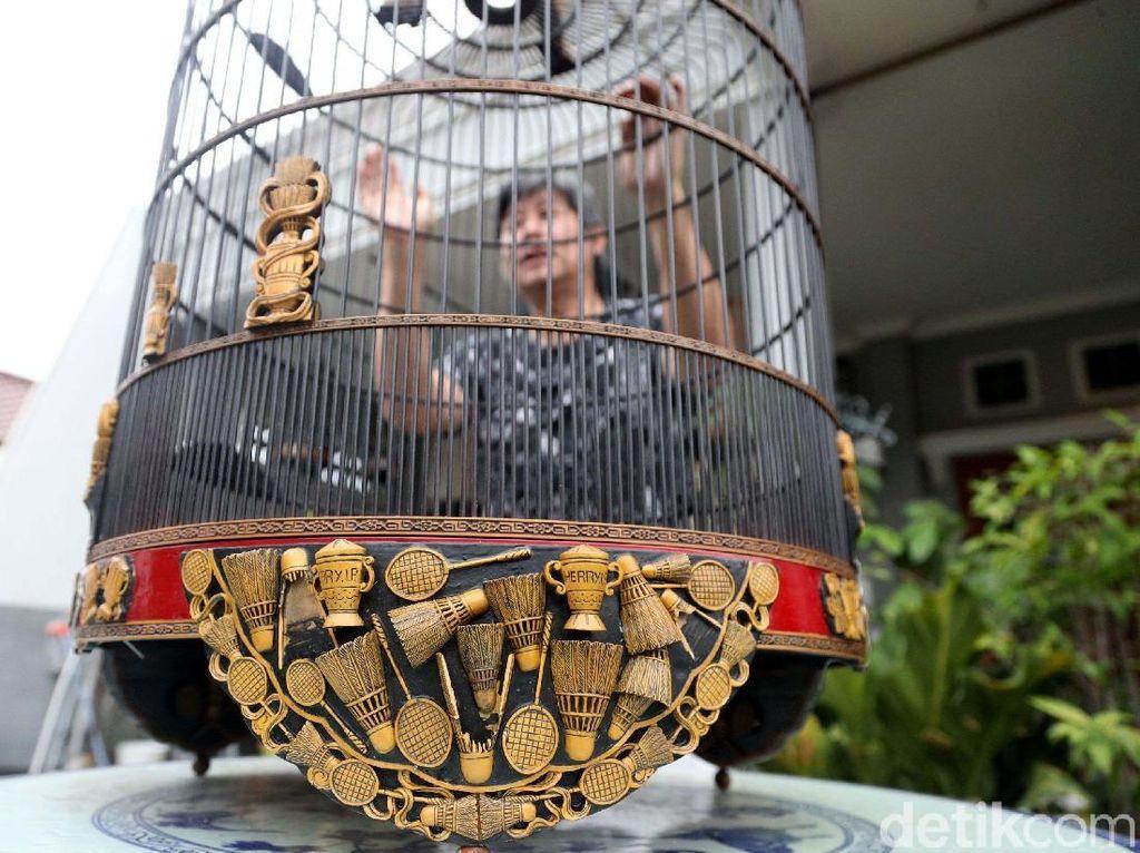 Burung Berkicau, Bisnis Sampingan Herry IP