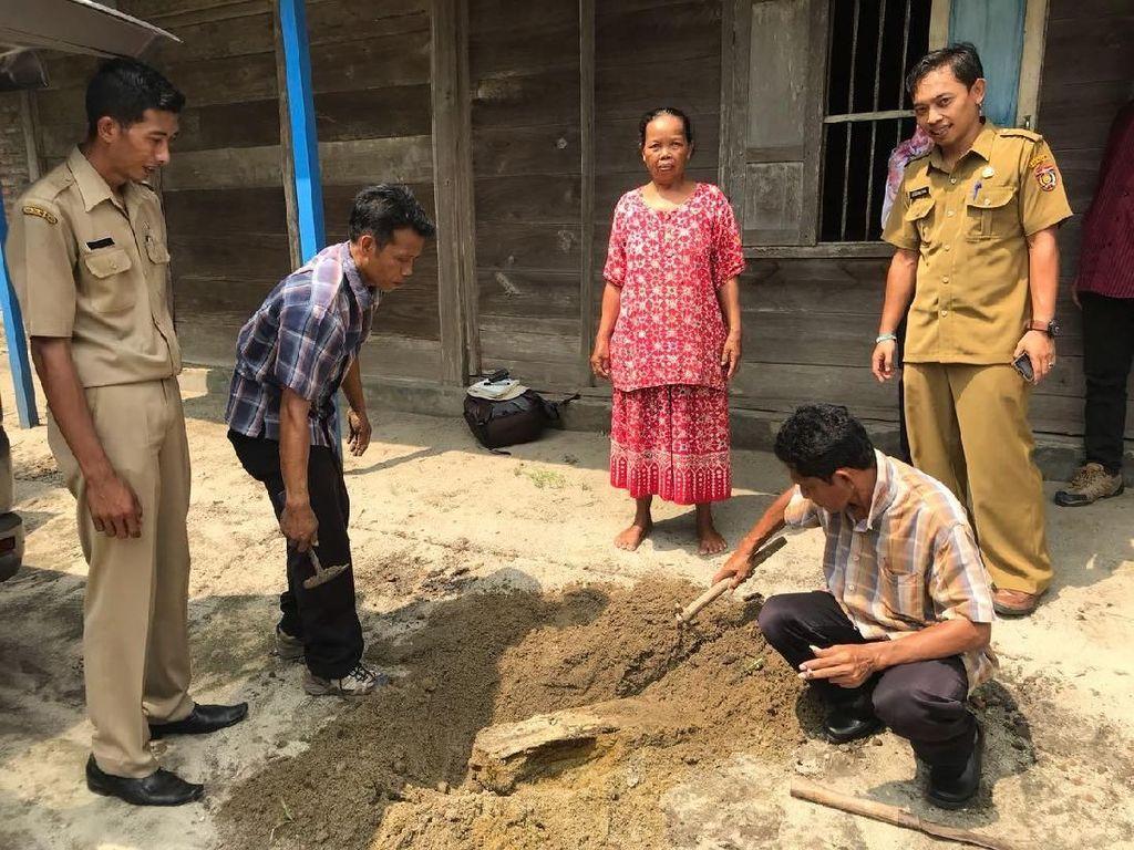 Iseng Cangkul Tanah, Tim Museum Trinil Temukan Fosil di Rumah Warga