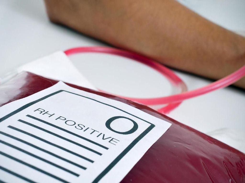 Terpopuler Sepekan: Keistimewaan Golongan Darah O yang Disebut Kebal COVID-19