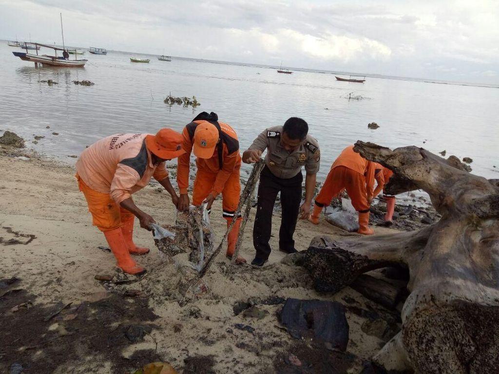 250 Karung Limbah Minyak Mentah Cemari Sekitar Pulau Pari