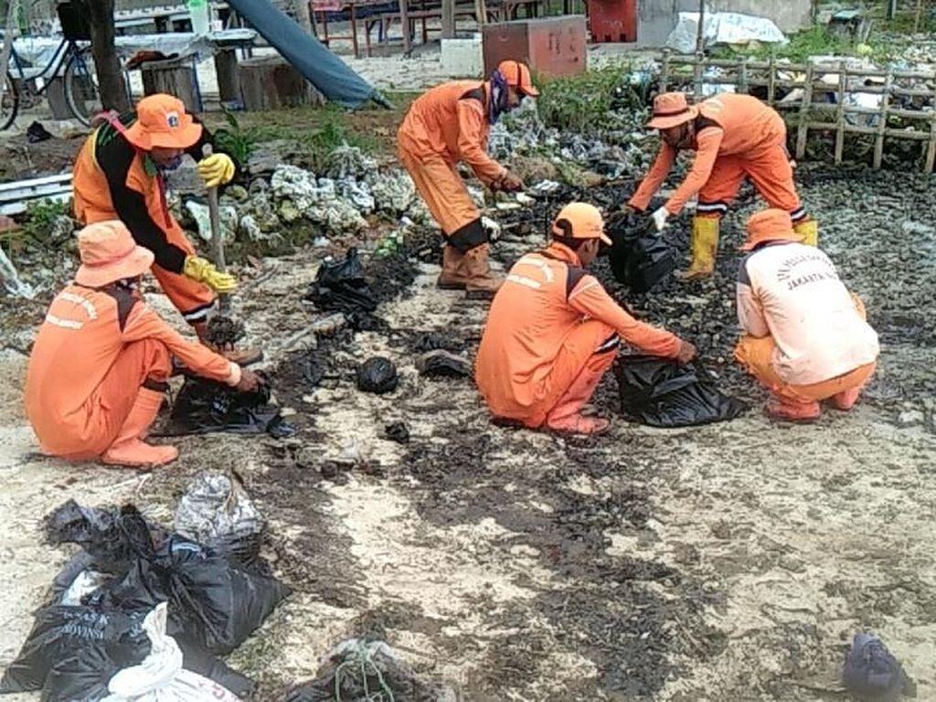 Tumpahan Minyak Misterius di Pulau Pari Sepanjang 10 Meter