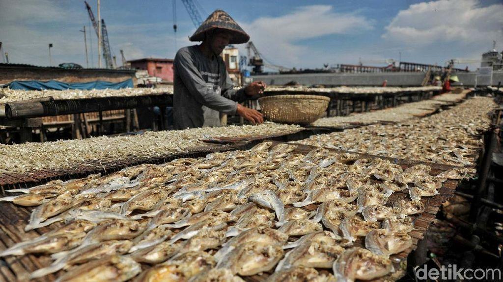 Produksi Ikan Asin di Cilincing Menurun