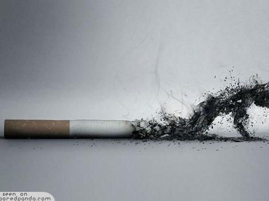 Sederet Penyakit Akibat Rokok yang Belum Banyak Diketahui (1)