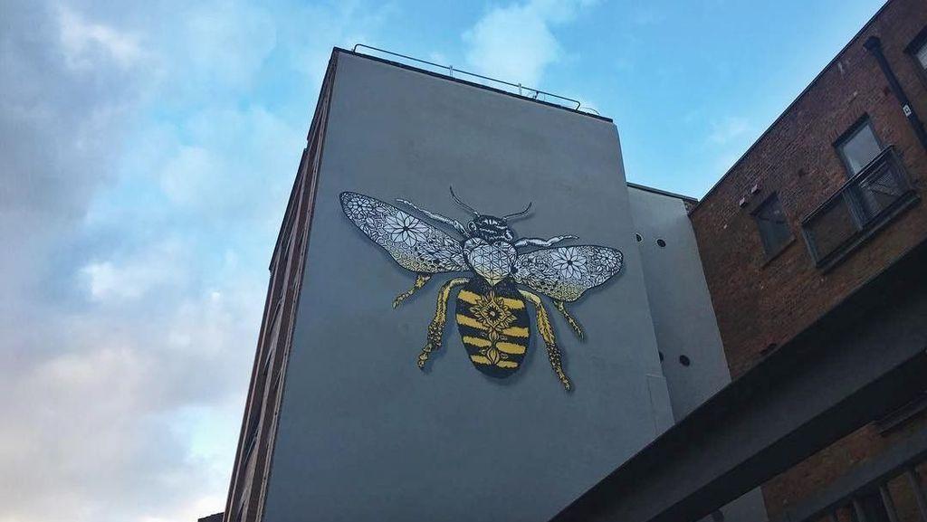 Ada yang Tahu Lambang Hewan Kota Manchester?