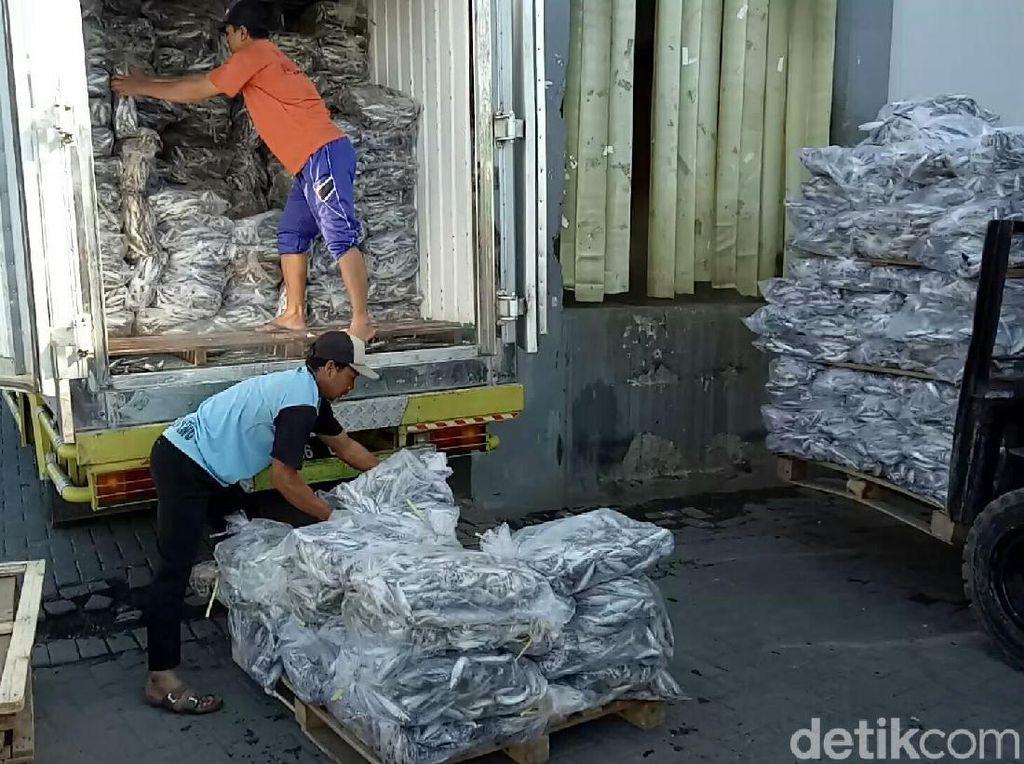 Pabrik Pengalengan Ikan di Indonesia Masih Banyak Gunakan Ikan Impor