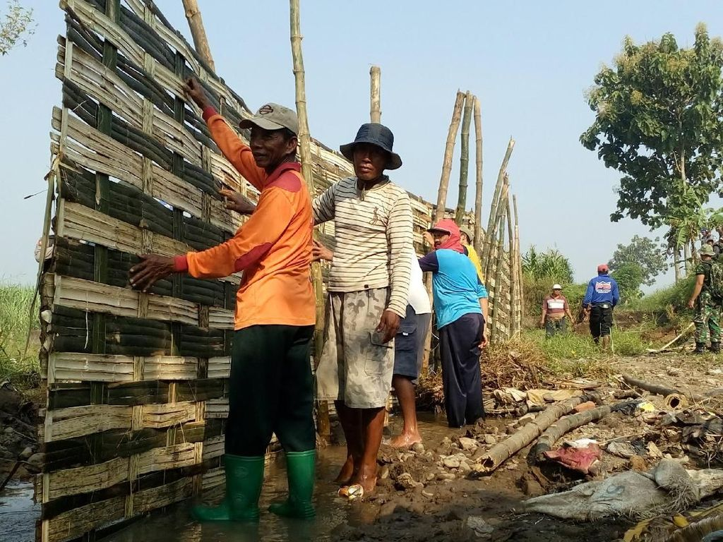 600 Hektare Lahan Sulit Air, Petani Mojokerto Swadaya Bangun Tanggul