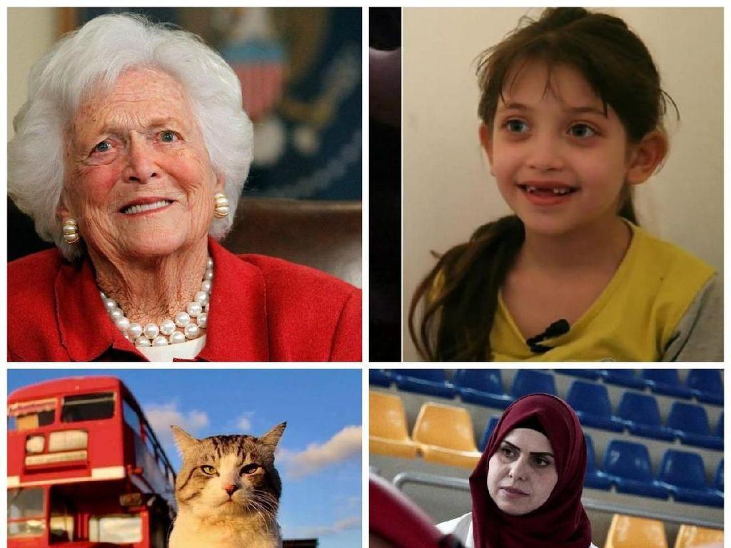 Riuh Dunia dalam Gambar: Kucing Bergaya Model, Cerita Anak Suriah