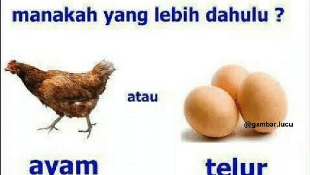 Penggemar Telur, Yuk Intip 10 Meme Telur yang Bikin Ngakak Ini!