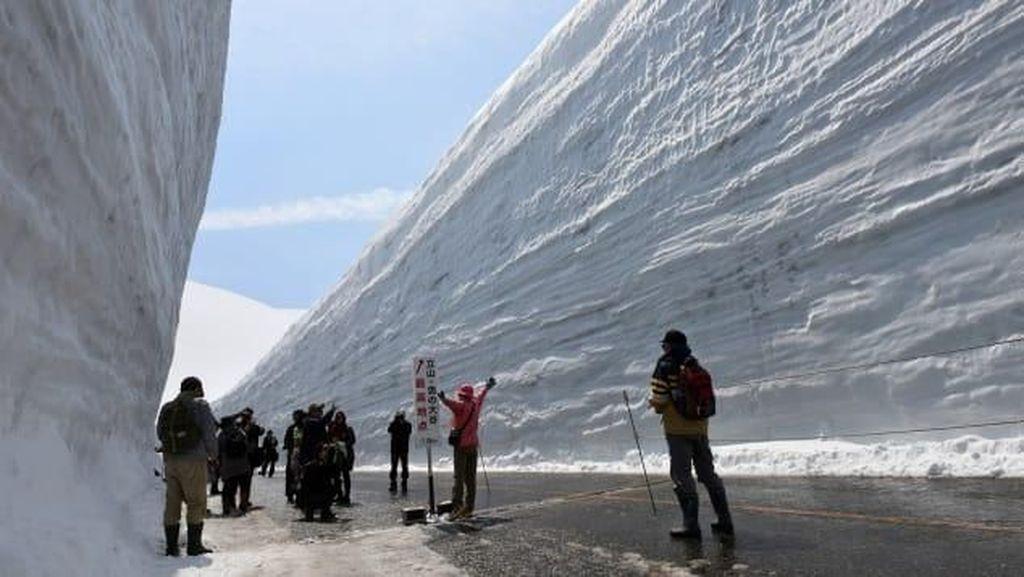 Foto: Jalanan Berdinding Salju yang Ciamik