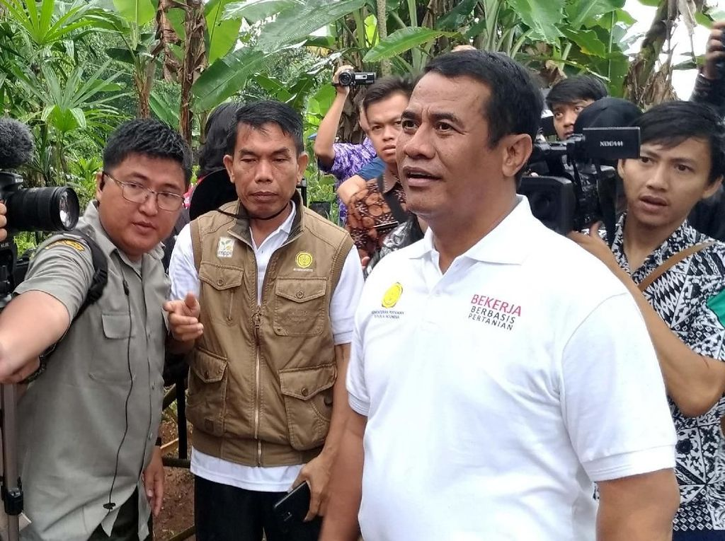 Mentan dan Ketua DPR ke BPK Bahas Masalah Pangan